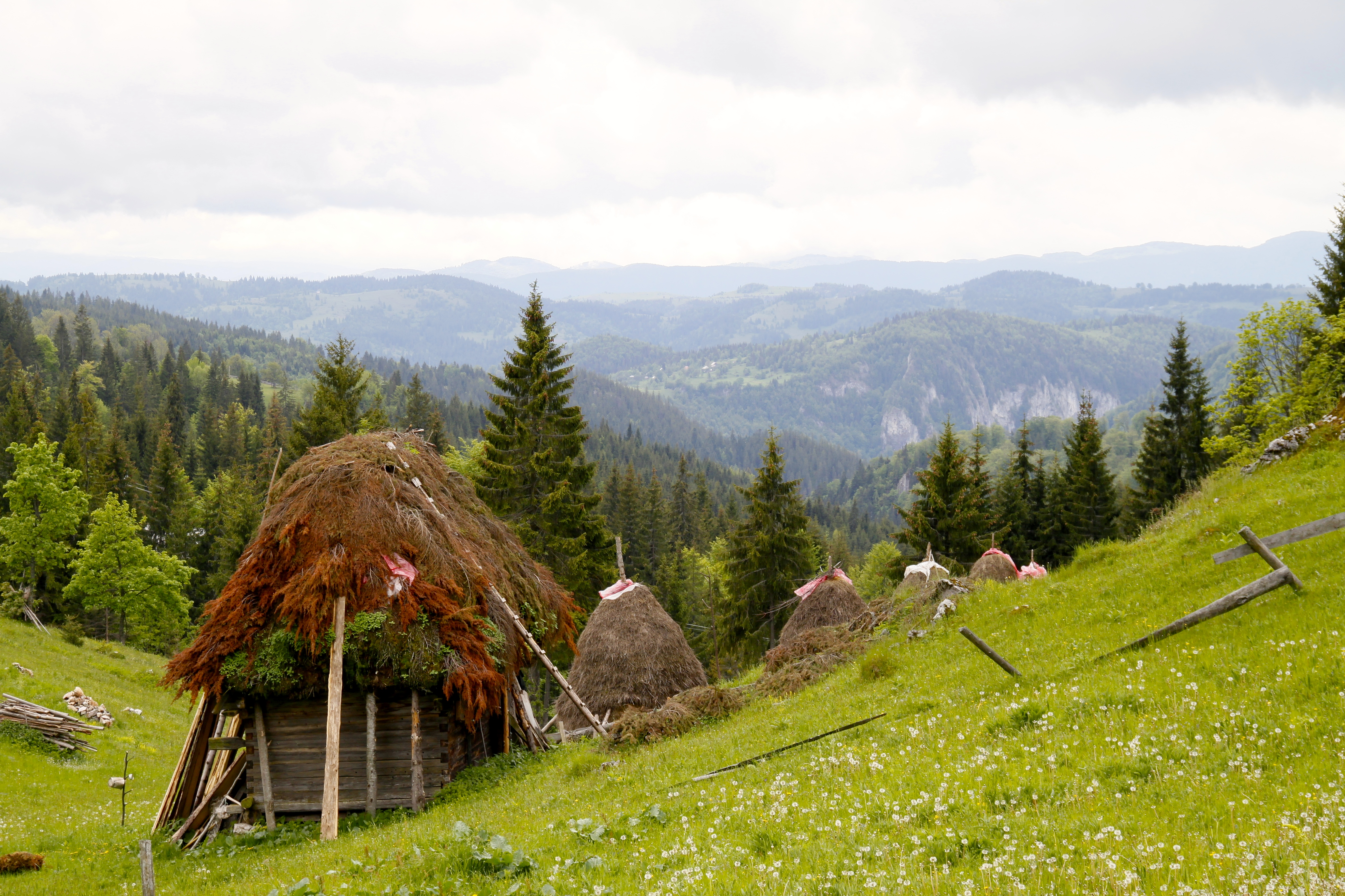 טיול ג'יפים ברומניה