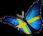 sweden flag.png
