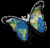 Go-Wild טיולים מיוחדים בעולם