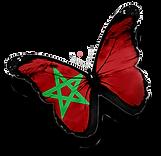המיטב של מרוקו