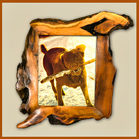 unusual 8x10 picture frame glass 8x10