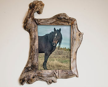 8x12 root wood frame, unique driftwood frame, driftwood photo frame, unusual handcrafted frames, Handmade Wooden wall decor, unique wood picture frame, unique family portrait frame, unique handmade wood frames, unique live edge frames, native edge photo frames, unique picture frames 8x12, unique custom picture frames, unique repurposed wood frame
