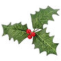 hollyberry.png