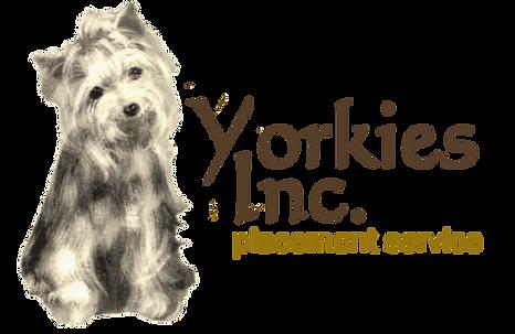 YorkieLogocompressed.png