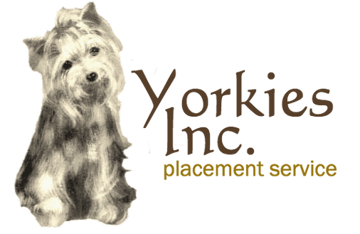 YorkieLogocompressed.png