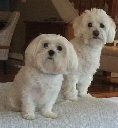Nora and Wally