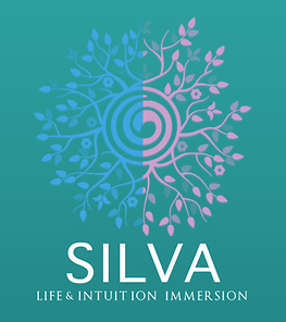 Silva 4 day immersion LOGO.png