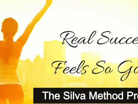 Why You Should Attend a Live Silva Event