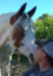 paardencoaching Gelderland, coaching gelderland, therapie Gelderland, psychische hulp heerde, pscyhische hulp Gelderland