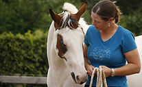 Aline Mellema paardencoach bij Horse2Heart in Heerde, coaching, therapie, pastoraat