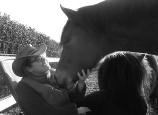 Een onverwachte, zachte paardenneus in mijn gezicht...