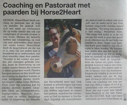 Coaching en Pastoraat met paarden bij Horse2Heart in Heerde