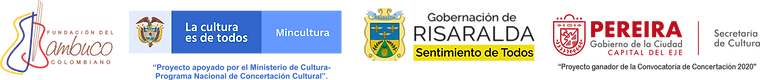 nueva franja logos institucinales 2021.p