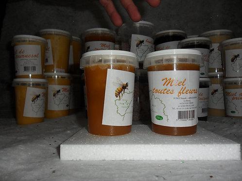 Miel toutes fleurs-250g