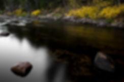 River 9.jpg