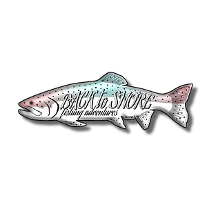 Back to Shore Logo.png