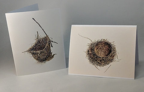 Boxed Note Cards: Empty Nest Set