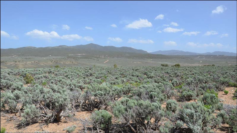 5.0 Acre Ranch with Beautiful Mountain Views