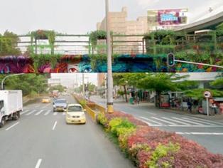 Medellín crece como Ecociudad con la adecuación de puentes ecológicos.