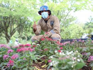 Puntos críticos de residuos se transforman en espacios verdes para la ciudad.