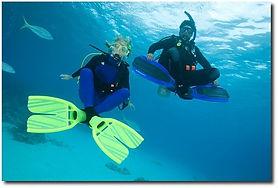 Adventure Scuba Diving, bali diving, diving bali, snorkeling bali, diving indonesia, scuba diving bali, bali snorkeling, bali scuba, bali scuba diving, indonesia diving, scuba diving seminyak, scuba bali