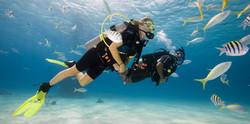 Adventure Scuba Diving Bali 2.jpg