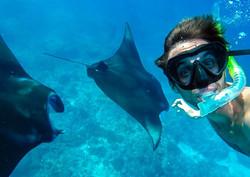 Manta Rays Bali.jpg