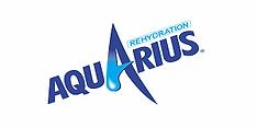 web-Aquarius.png