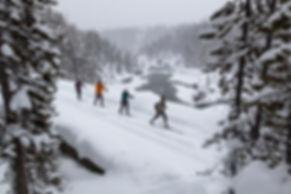 skiing-3896794_1280.jpg