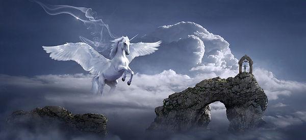 horse-3395135_1280.jpg