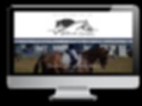 Balanced Equestrian Australia wesbite -
