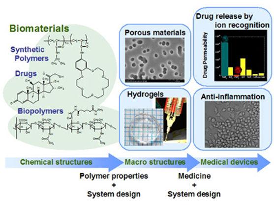 Biomaterials Consulting & Design & Development