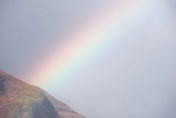 rainbow-top-min.jpg
