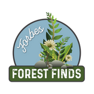 Forbes Forest Finds