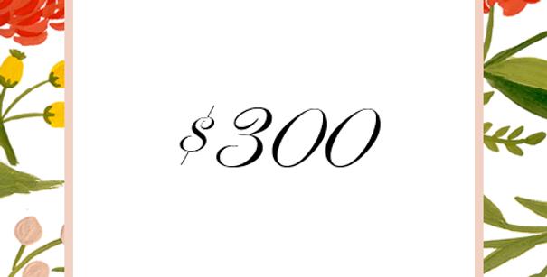 $300 Deposit