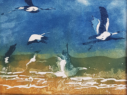 Audrey Bernays & Jenny Beach-Magpie Geese-2019