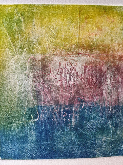 Audrey Bernays  & Jenny Beach 'Kakadu' 2019 Lithograph