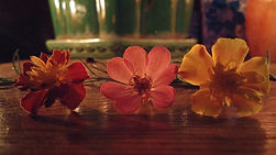 Three flowers in candlelight on an alter.
