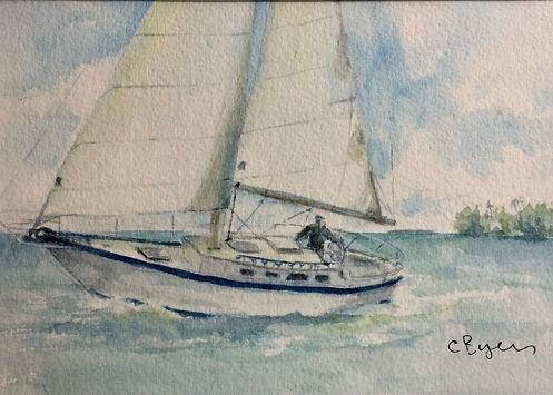Sail boat.jpg