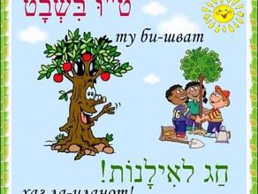 Новый Год деревьев