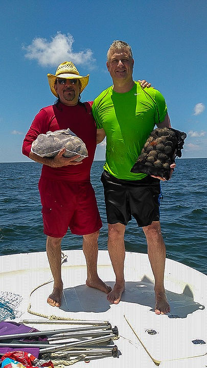 Citrus County Scalloping