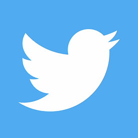 Twitter - Website icon.png