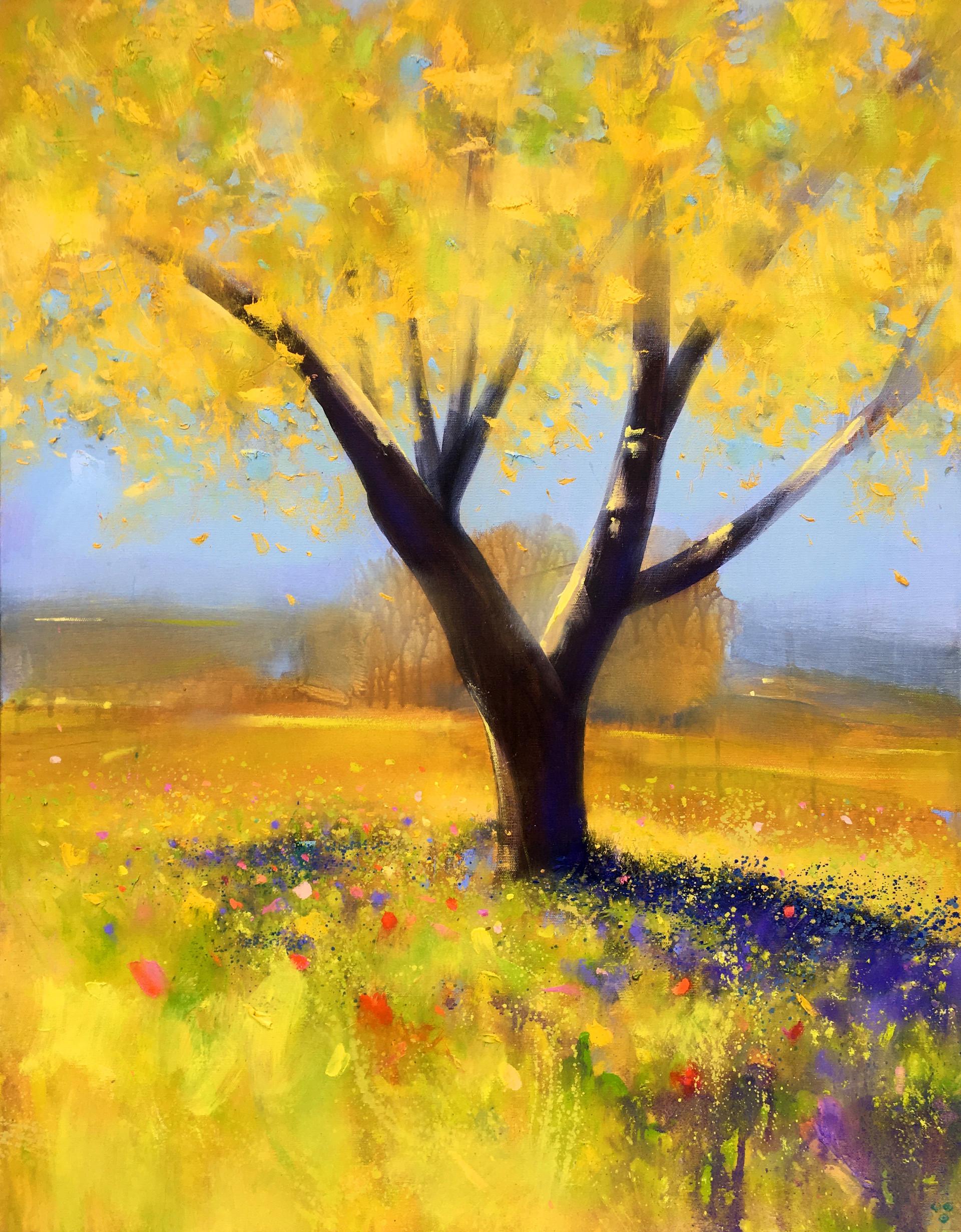 Golden Light on Tree