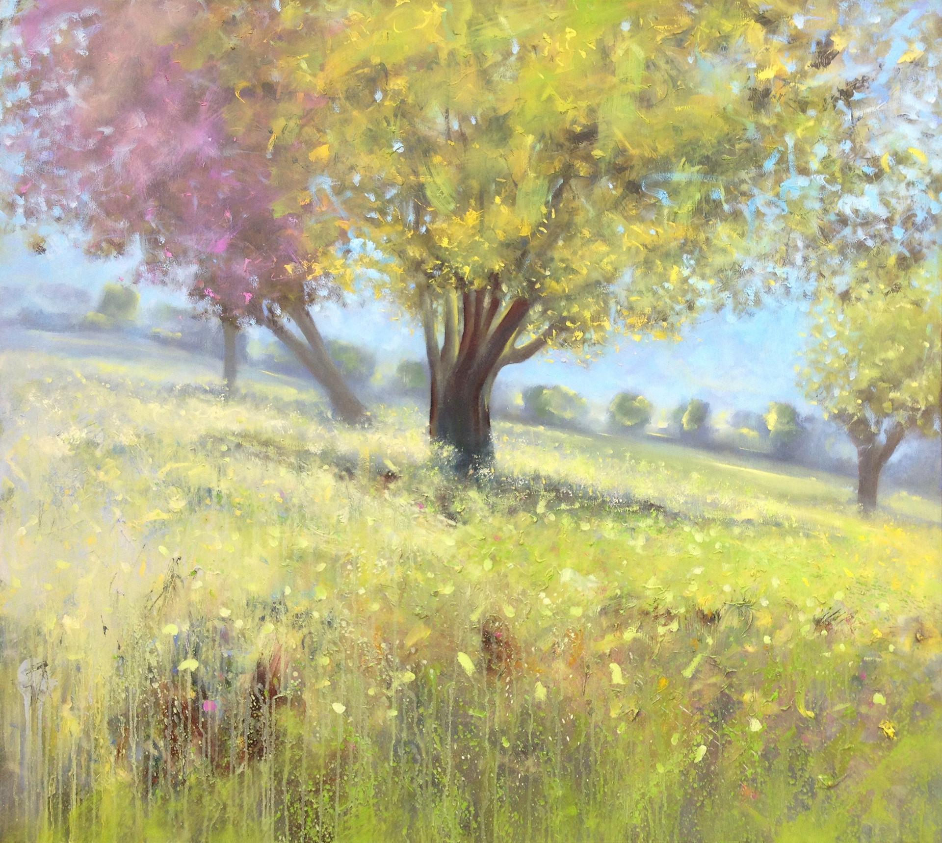 Carob tree and mustard  eld Emek HaEllah