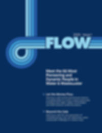 Flow Cover.jpg