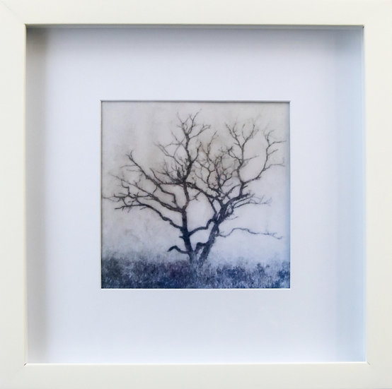 Foto print Trees 1 in lijst (wit)