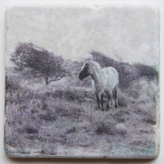 Foto tegel, Wild Horses 3