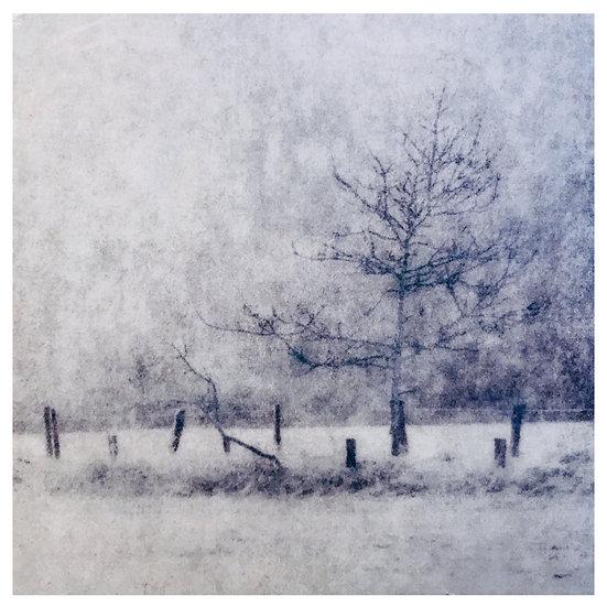 Kunstkaart Bomen, nr. 7