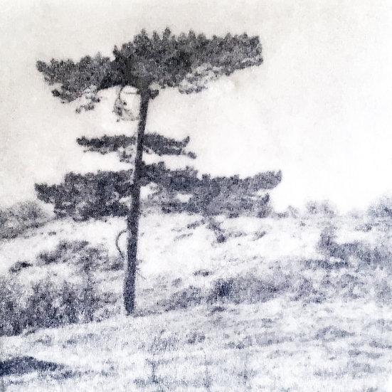 Houten fotoblok Tree III