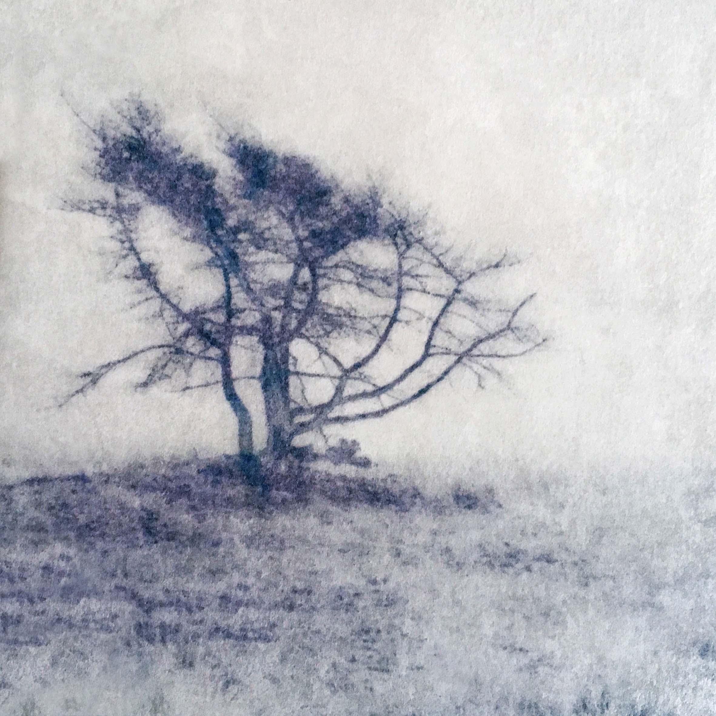 Solitude III_KarenWinnubstFotografie_LR.